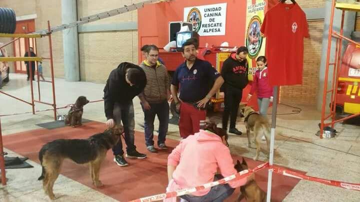 Exhibición de la Unidad Canina de Rescate Alpesa de Sevilla en SURMascotas