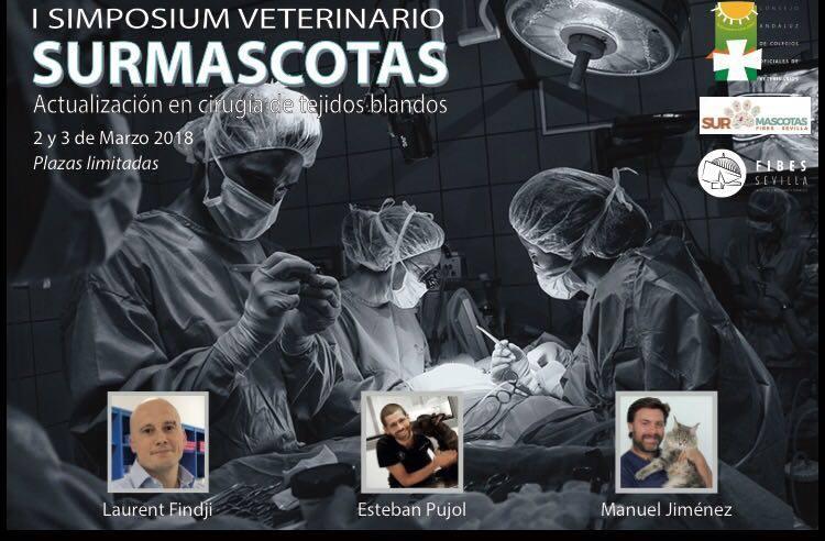 CACV y FIBES organizan I Simposium Veterinario SURMascotas sobre cirugía de tejidos blandos